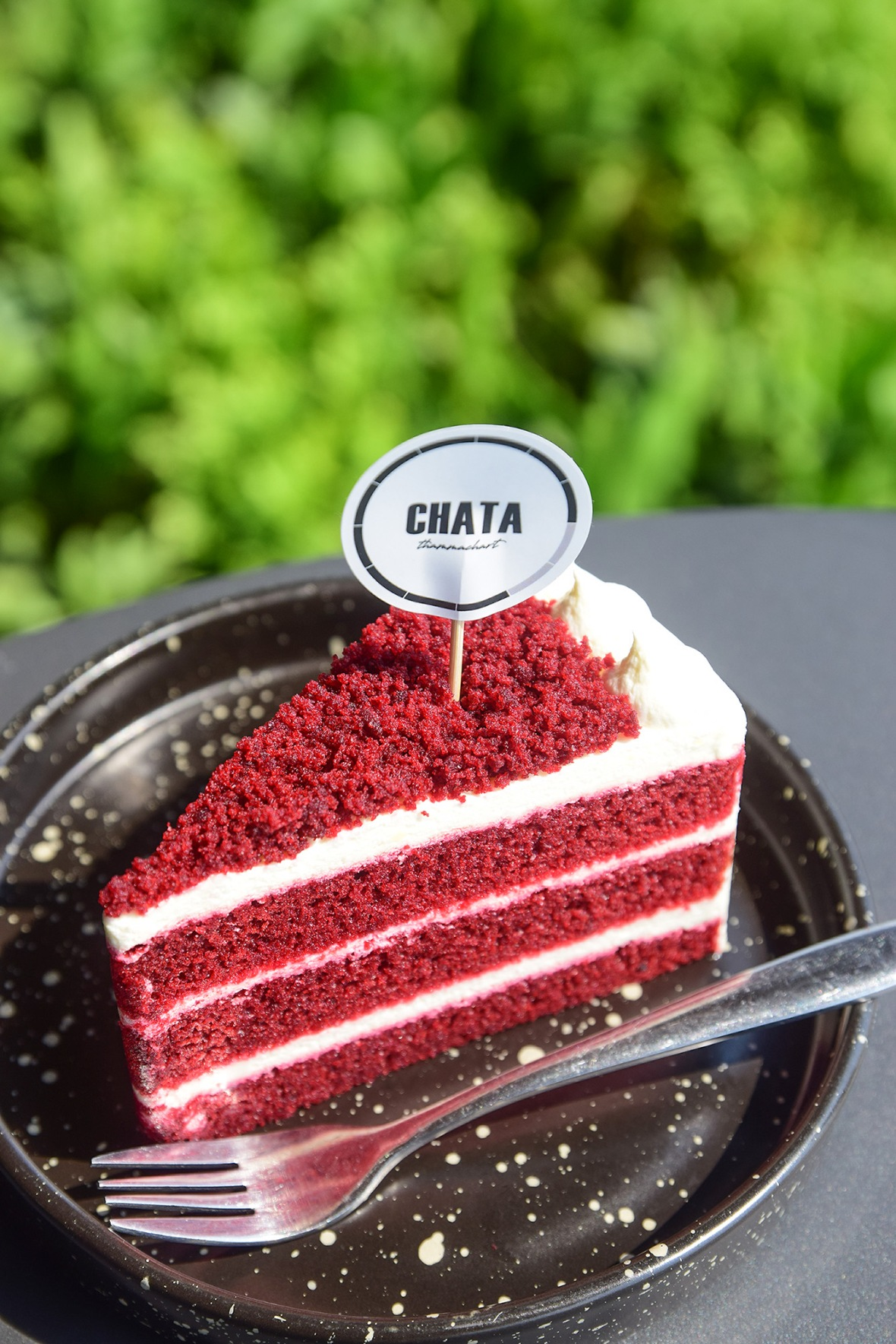 Chata thammachart Cafe&Bistro (38)