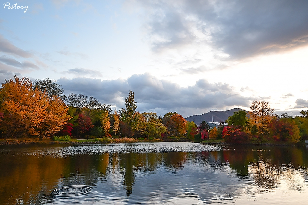 Hokkaido Day 6 (39)