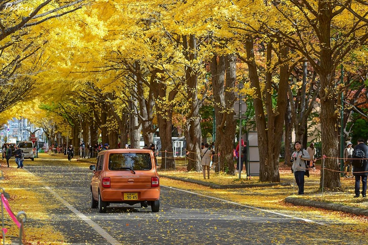 Hokkaido Day 6 (44)