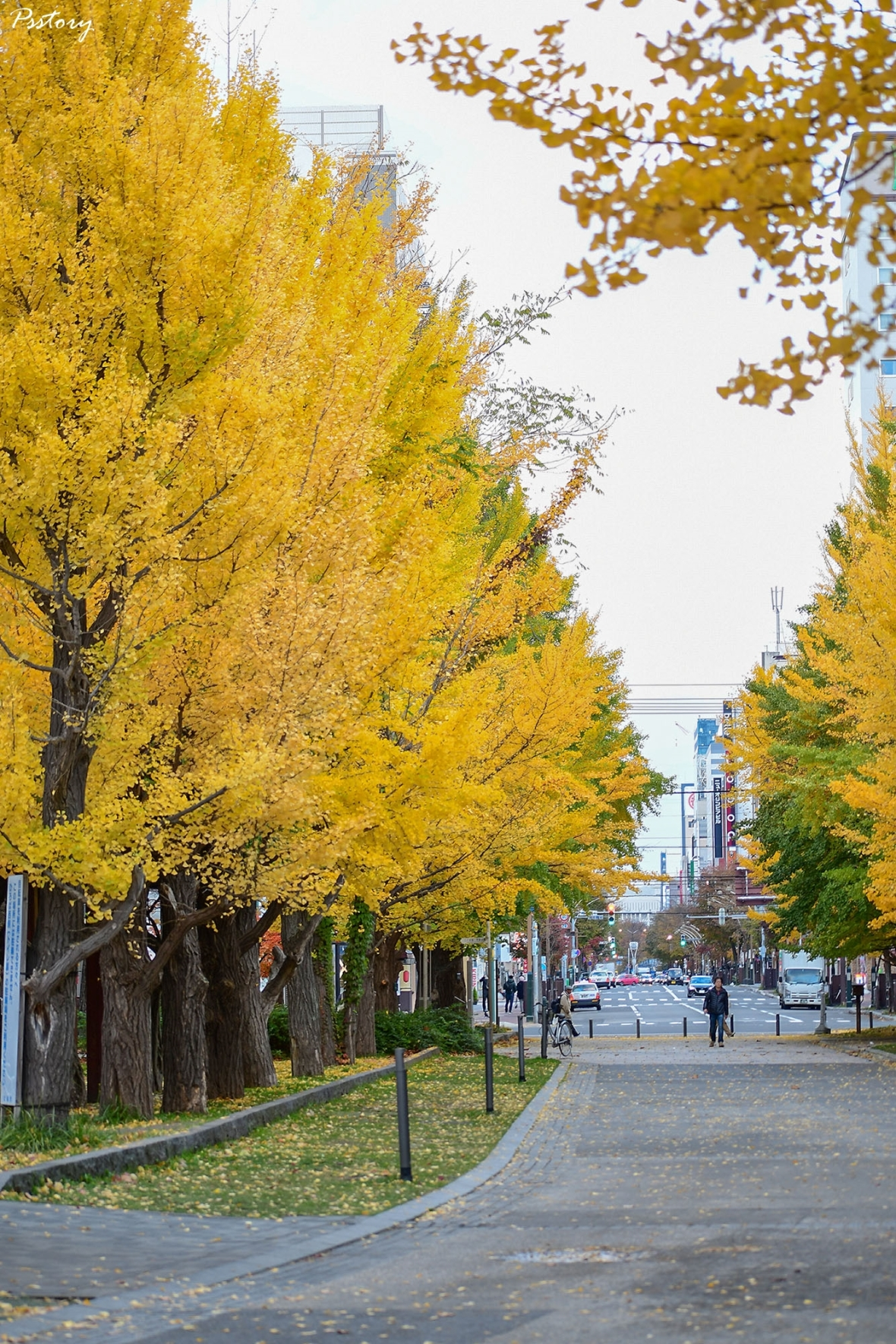 Hokkaido Day 7 (1)