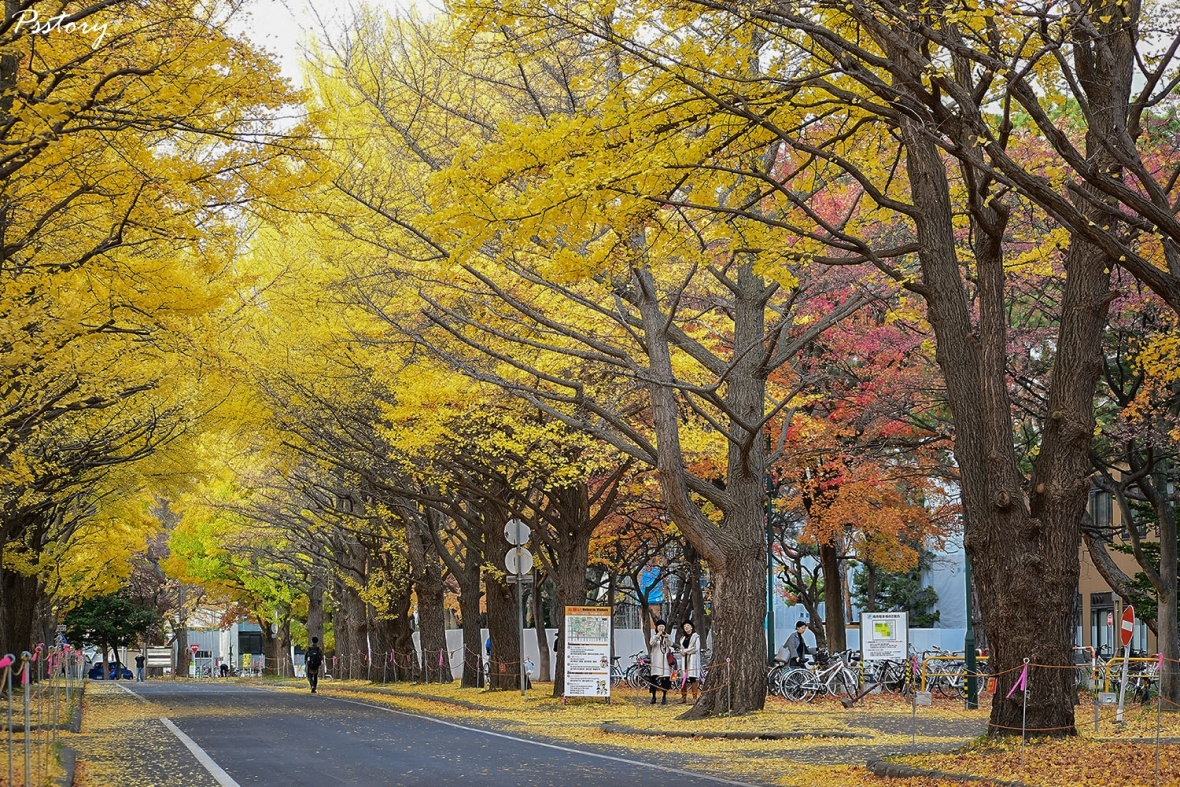 Hokkaido Day 7 (4)
