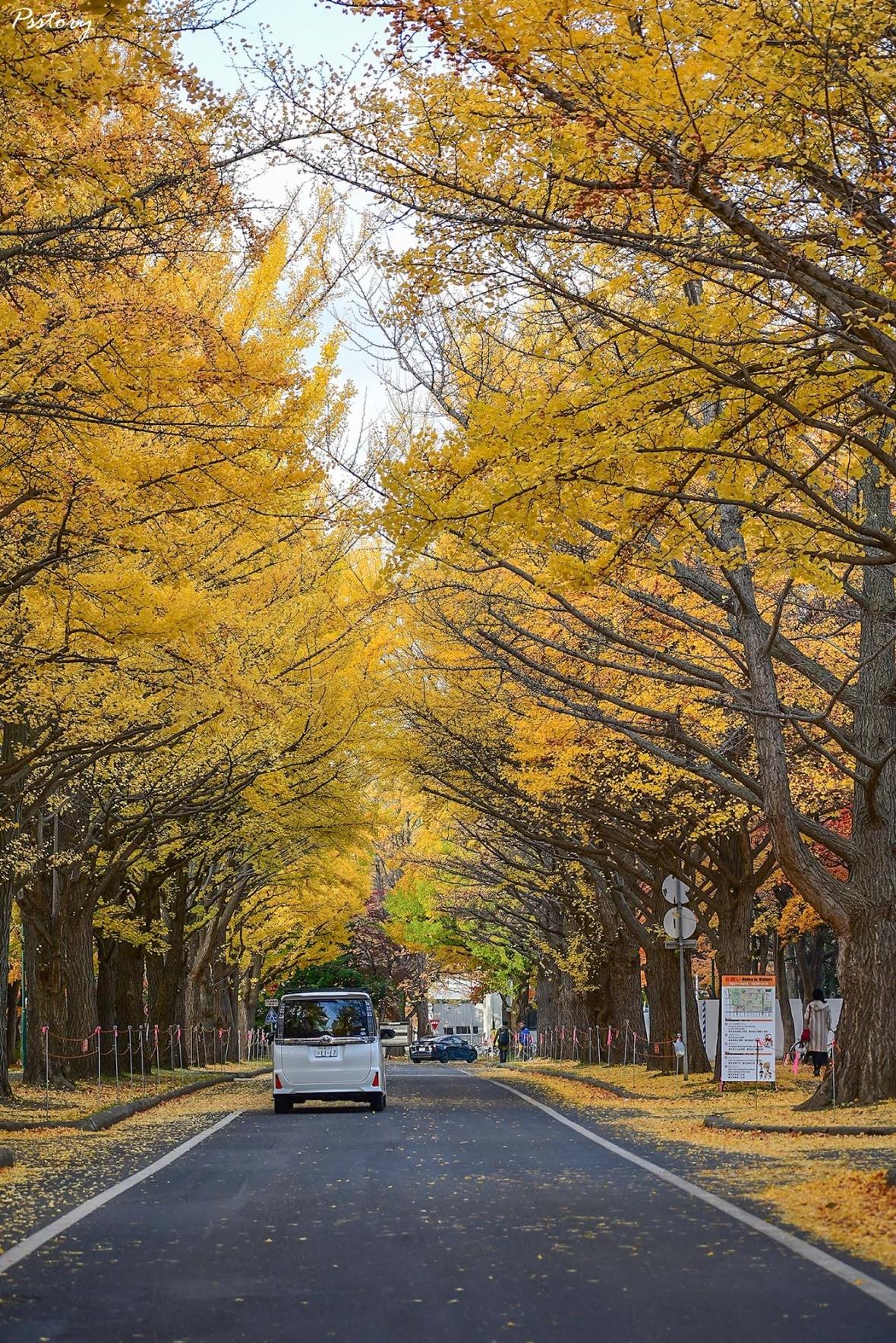 Hokkaido Day 7 (6)