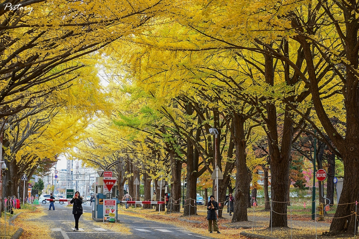 Hokkaido Day 7 (7)