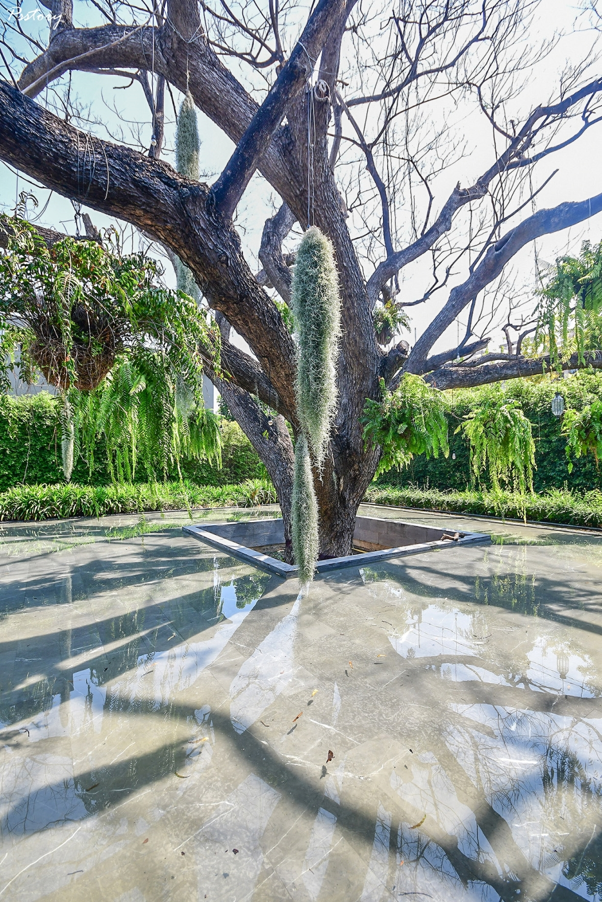 V villas Hua Hin (178)